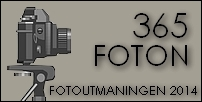 logga365foton